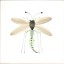 Rye Pottery - hand painted Dragonfly Tiles as seen on Grand Designs