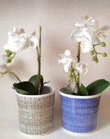Hand made & hand painted Rye Pottery Round Planter - Sm